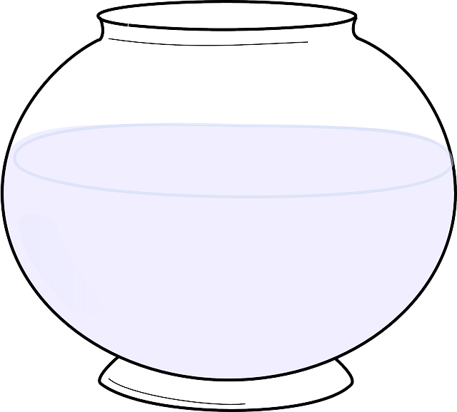fishbowl-304200_640